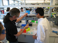 2008 Biomedical Breakthrough Essay Contest