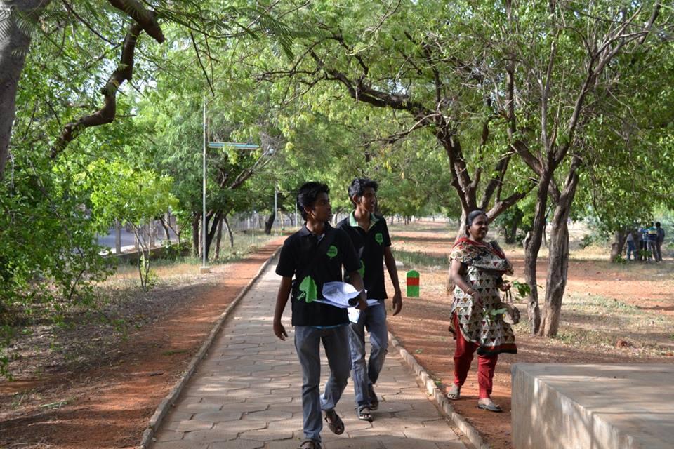Maram Madurai_classiblogger 12
