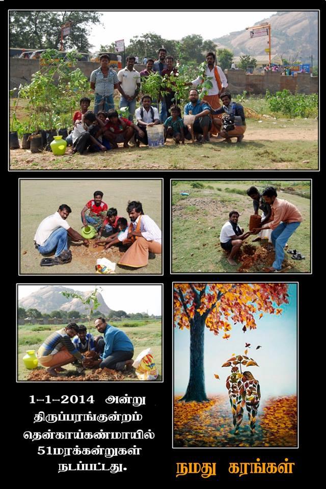Maram Madurai_classiblogger 15
