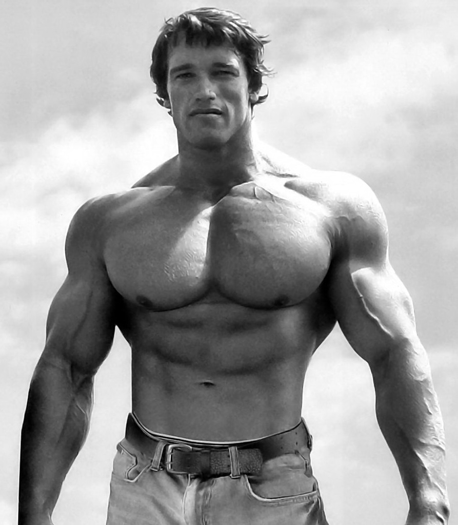 List-of-Gyms-in-Madurai-with-contact-details-classiblogger-directory-Arnold-Schwarzeneger
