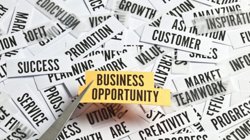 Best Business Opportunities to Start in 2020