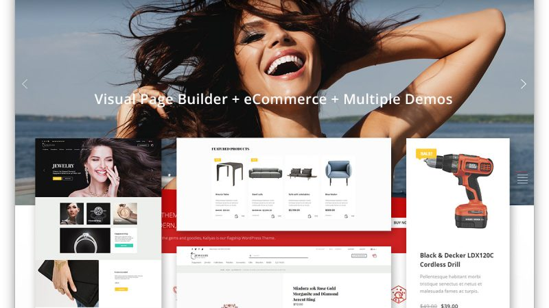 Introduction to Ecommerce for WordPress